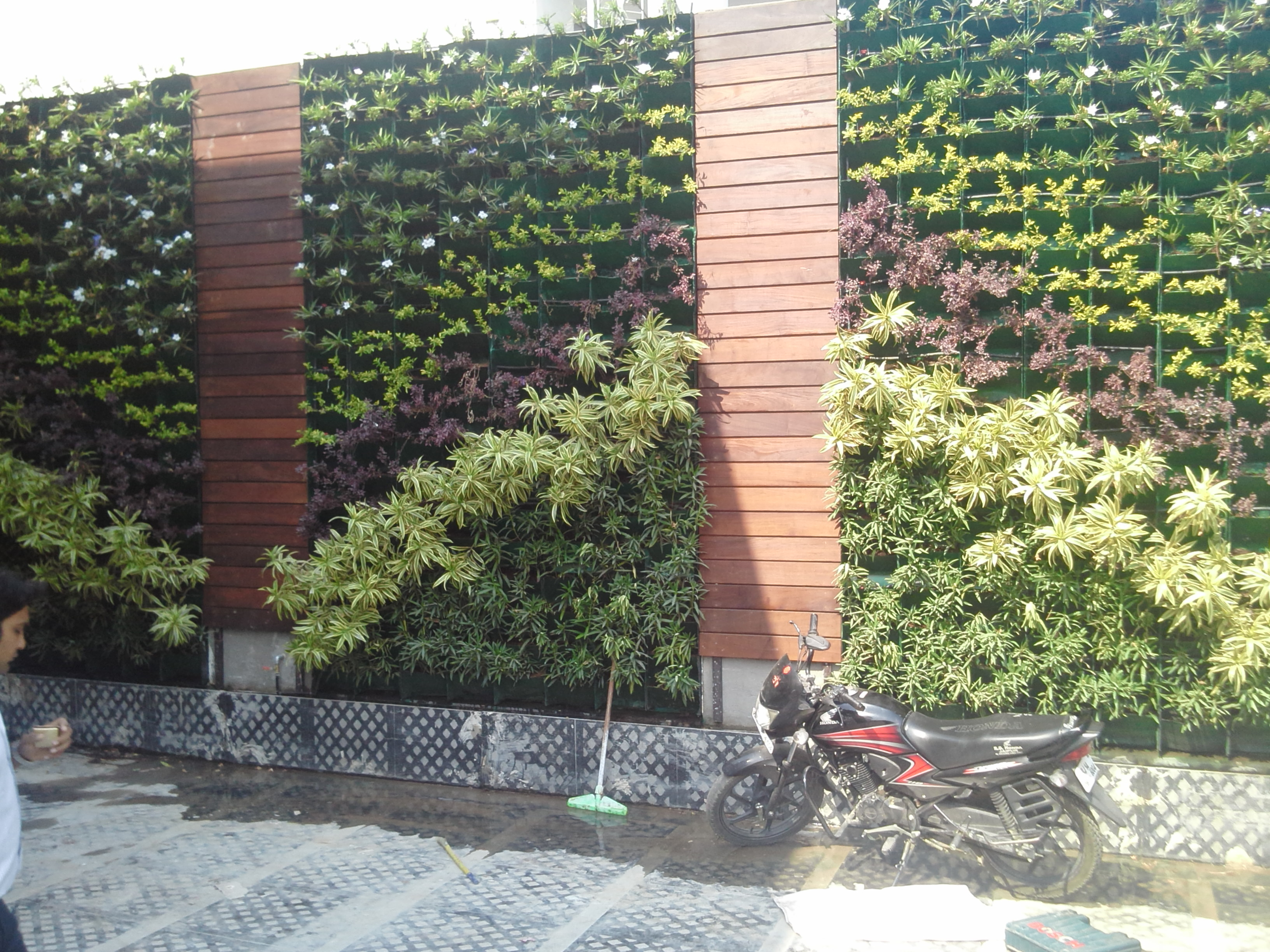 VERTICAL WALL GARDENING